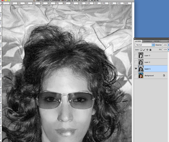 Cutting Out Hair in Photoshop - Identify areas of light and dark