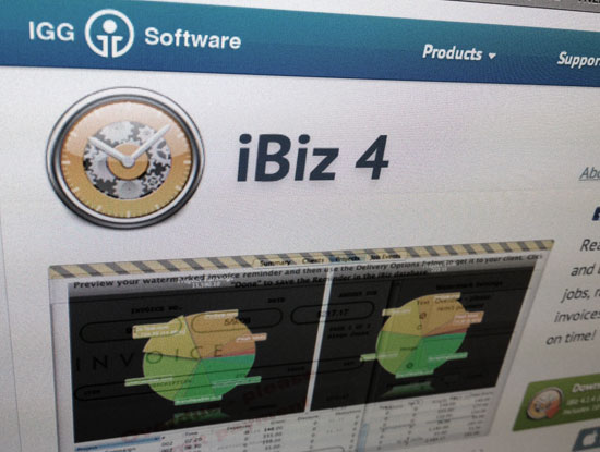 iBiz timekeeping and invoicing software